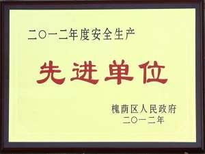 2012安全生产先进单位